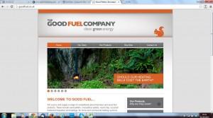 good fuel after