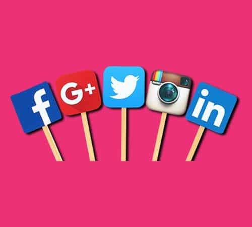 Social Media Management North Devon